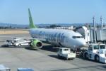 職業旅人さんが、鹿児島空港で撮影したソラシド エア 737-86Nの航空フォト(写真)