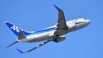 Take51さんが、那覇空港で撮影した全日空 737-781の航空フォト(写真)