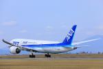 臨時特急7032Mさんが、佐賀空港で撮影した全日空 787-881の航空フォト(写真)