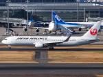 51ANさんが、羽田空港で撮影した日本航空 767-346/ERの航空フォト(写真)
