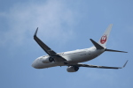 Hiroyuki.Sさんが、成田国際空港で撮影した日本航空 737-846の航空フォト(写真)