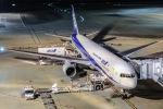 じゃがさんが、羽田空港で撮影した全日空 767-381の航空フォト(写真)