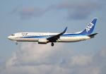 雲霧さんが、成田国際空港で撮影した全日空 737-881の航空フォト(写真)