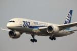 ドラパチさんが、成田国際空港で撮影した全日空 787-881の航空フォト(写真)