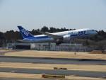 突撃隊長さんが、成田国際空港で撮影した全日空 787-881の航空フォト(写真)