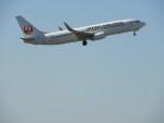 突撃隊長さんが、成田国際空港で撮影した日本航空 737-846の航空フォト(写真)