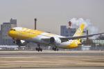 shiraponさんが、成田国際空港で撮影したスクート 787-9の航空フォト(写真)