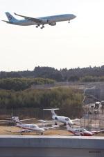 yusuke@HNDさんが、成田国際空港で撮影した大韓航空 A330-323Xの航空フォト(写真)