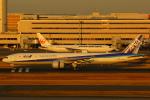ハンバーグ師匠さんが、羽田空港で撮影した全日空 777-381の航空フォト(写真)