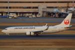 ハンバーグ師匠さんが、羽田空港で撮影した日本航空 737-846の航空フォト(写真)