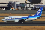 ハンバーグ師匠さんが、羽田空港で撮影した全日空 737-781の航空フォト(写真)