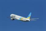 masakazuさんが、羽田空港で撮影したAIR DO 767-33A/ERの航空フォト(写真)