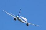 DDYさんが、岩国空港で撮影した全日空 A320-211の航空フォト(写真)