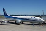 うさぎぱぱさんが、鹿児島空港で撮影した全日空 737-881の航空フォト(写真)