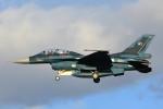 いっくんさんが、名古屋飛行場で撮影した航空自衛隊 F-2Bの航空フォト(写真)
