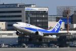 sukiさんが、伊丹空港で撮影したANAウイングス 737-54Kの航空フォト(写真)