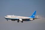 msrwさんが、成田国際空港で撮影した厦門航空 737-85Cの航空フォト(写真)