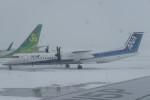SFJ_capさんが、新千歳空港で撮影したANAウイングス DHC-8-402Q Dash 8の航空フォト(写真)
