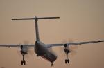 東亜国内航空さんが、伊丹空港で撮影したANAウイングス DHC-8-402Q Dash 8の航空フォト(写真)