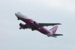 Shiro_ichiganさんが、関西国際空港で撮影したピーチ A320-214の航空フォト(写真)