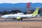 tabi0329さんが、鹿児島空港で撮影したソラシド エア 737-81Dの航空フォト(写真)