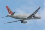 AREA884さんが、成田国際空港で撮影したトランスアジア航空 A320-232の航空フォト(写真)