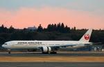 Wasawasa-isaoさんが、成田国際空港で撮影した日本航空 777-346/ERの航空フォト(写真)