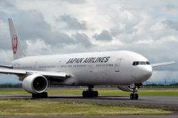 うさぎぱぱさんが、鹿児島空港で撮影した日本航空 777-346の航空フォト(写真)