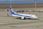 delawakaさんが、中部国際空港で撮影した全日空 737-881の航空フォト(写真)