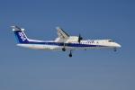 E-75さんが、函館空港で撮影したANAウイングス DHC-8-402Q Dash 8の航空フォト(写真)