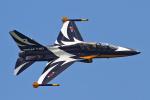 りんたろうさんが、シンガポール・チャンギ国際空港で撮影した大韓民国空軍 T-50B Golden Eagleの航空フォト(写真)