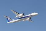 Tomochanさんが、函館空港で撮影したANAウイングス DHC-8-402Q Dash 8の航空フォト(写真)