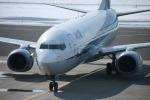 KAMIYA JASDFさんが、函館空港で撮影した全日空 737-881の航空フォト(写真)