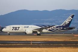頼嗣さんが、伊丹空港で撮影した全日空 787-881の航空フォト(写真)