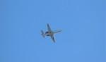 jp arrowさんが、中部国際空港で撮影した日本エアロスペース 560 Citation Encore+の航空フォト(写真)