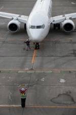 GNPさんが、釧路空港で撮影した日本航空 737-846の航空フォト(写真)