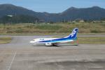 みなかもさんが、新石垣空港で撮影したANAウイングス 737-54Kの航空フォト(写真)