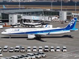 51ANさんが、羽田空港で撮影した全日空 A321-211の航空フォト(写真)