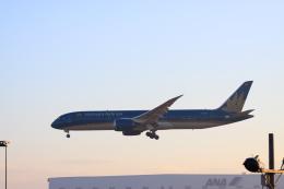 wagonist24wさんが、成田国際空港で撮影したベトナム航空 787-9の航空フォト(写真)