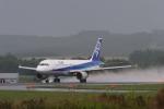 Maestroさんが、旭川空港で撮影した全日空 A320-211の航空フォト(写真)