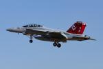 Mamoruuuuさんが、厚木飛行場で撮影したアメリカ海軍 F/A-18F Super Hornetの航空フォト(写真)