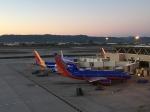 さとうさんが、フェニックス・スカイハーバー国際空港で撮影したサウスウェスト航空 737-7H4の航空フォト(写真)