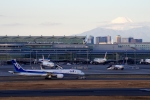 zettaishinさんが、羽田空港で撮影した全日空 787-9の航空フォト(写真)