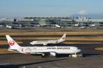zettaishinさんが、羽田空港で撮影した日本航空 767-346/ERの航空フォト(写真)