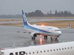 F.KAITOさんが、鹿児島空港で撮影した全日空 737-881の航空フォト(写真)