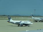 今ちゃんさんが、仁川国際空港で撮影したオーロラ A319-112の航空フォト(写真)