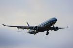 MOHICANさんが、成田国際空港で撮影したベトナム航空 A330-223の航空フォト(写真)