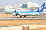 canon_leopardさんが、伊丹空港で撮影した全日空 737-881の航空フォト(写真)