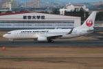たみぃさんが、宮崎空港で撮影した日本航空 737-846の航空フォト(写真)