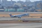 saku39さんが、伊丹空港で撮影したジェイ・エア CL-600-2B19 Regional Jet CRJ-200ERの航空フォト(写真)